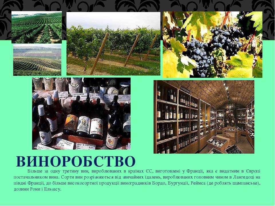 ВИНОРОБСТВО Більше за одну третину вин, вироблюваних в країнах ЄС, виготовлен...