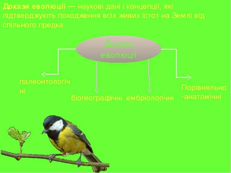 До кази еволю ції — наукові дані і концепції, які підтверджують походження вс...