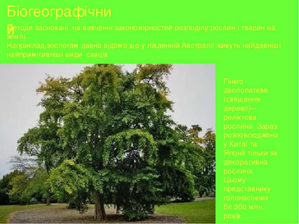 Біогеографічний Методи засновані на вивченні закономірностей розподілу рослин...