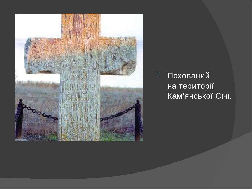 Похований натериторії Кам'янської Січі.