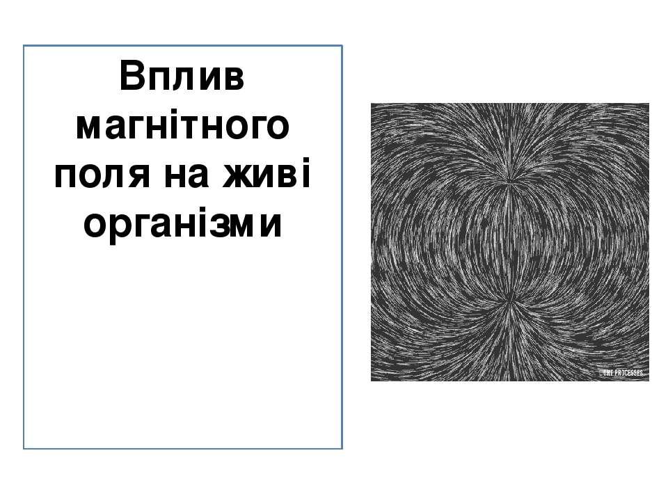 Вплив магнітного поля на живі організми