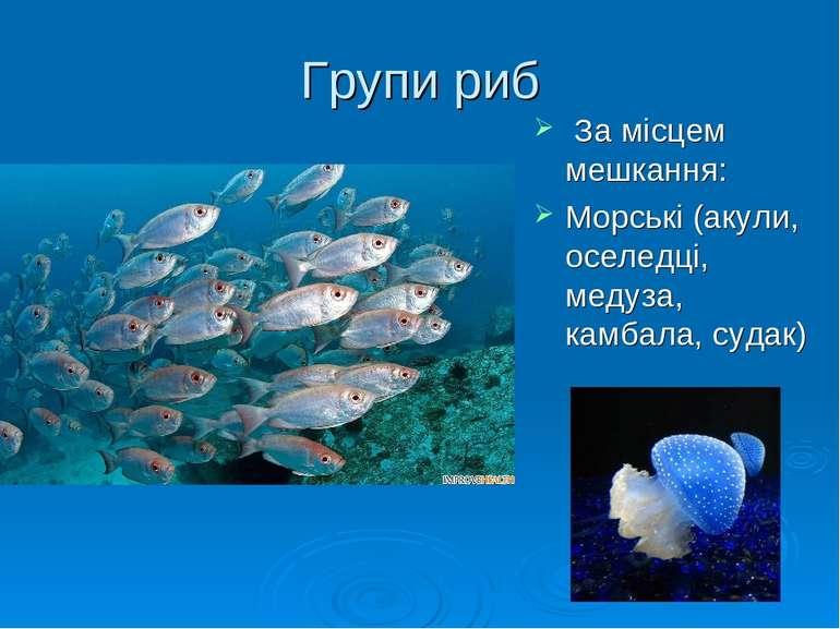 Групи риб За місцем мешкання: Морські (акули, оселедці, медуза, камбала, судак)