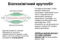 Біогеохімічний кругообіг На відміну від енергії, котра використовувалася орга...