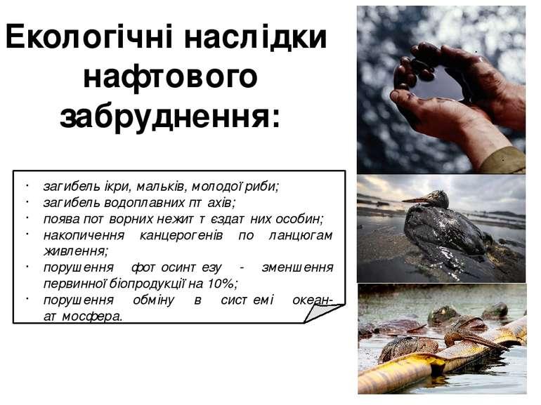 Екологічні наслідки нафтового забруднення: загибель ікри, мальків, молодої ри...