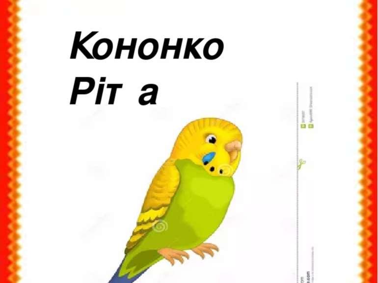 Кононко Ріта
