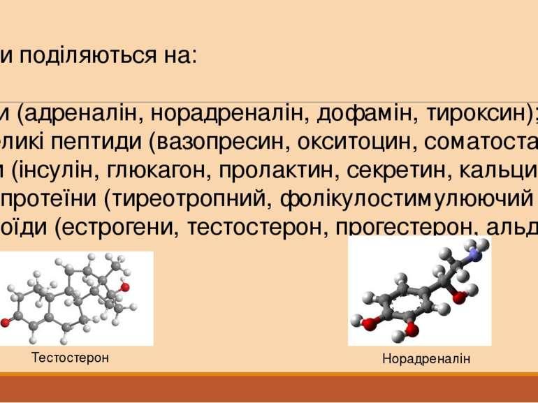 Гормони поділяються на: Аміни (адреналін, норадреналін, дофамін, тироксин); Н...