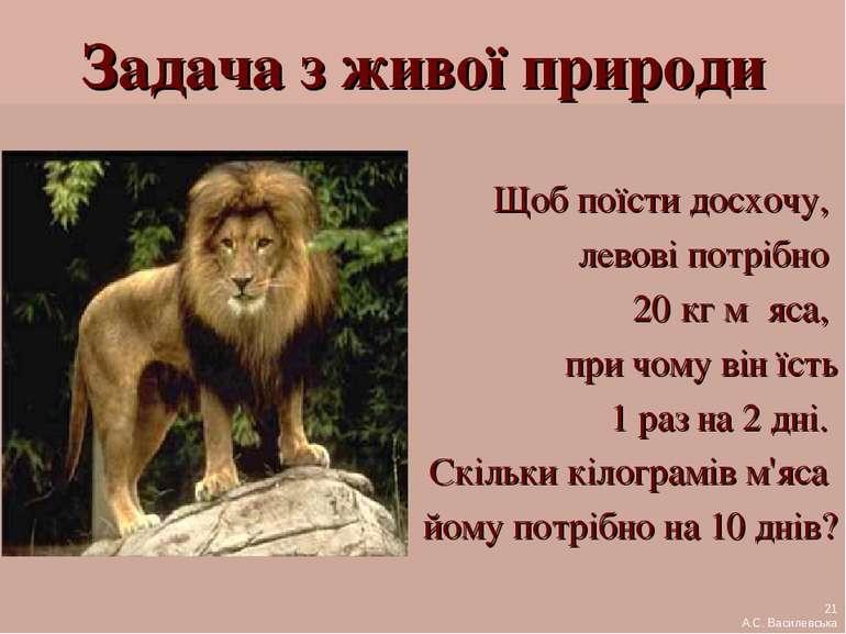 Задача з живої природи Щоб поїсти досхочу, левові потрібно 20 кг м´яса, при ч...
