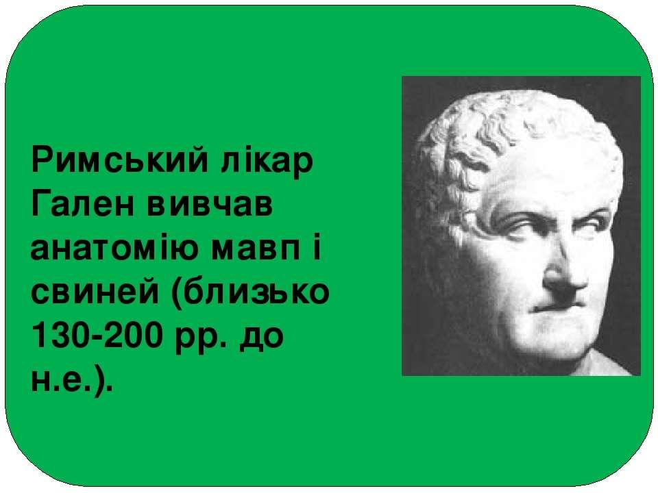 Римський лікар Гален вивчав анатомію мавп і свиней (близько 130-200 рр. до н....