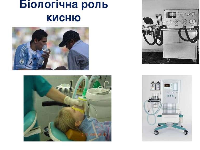 Біологічна роль кисню