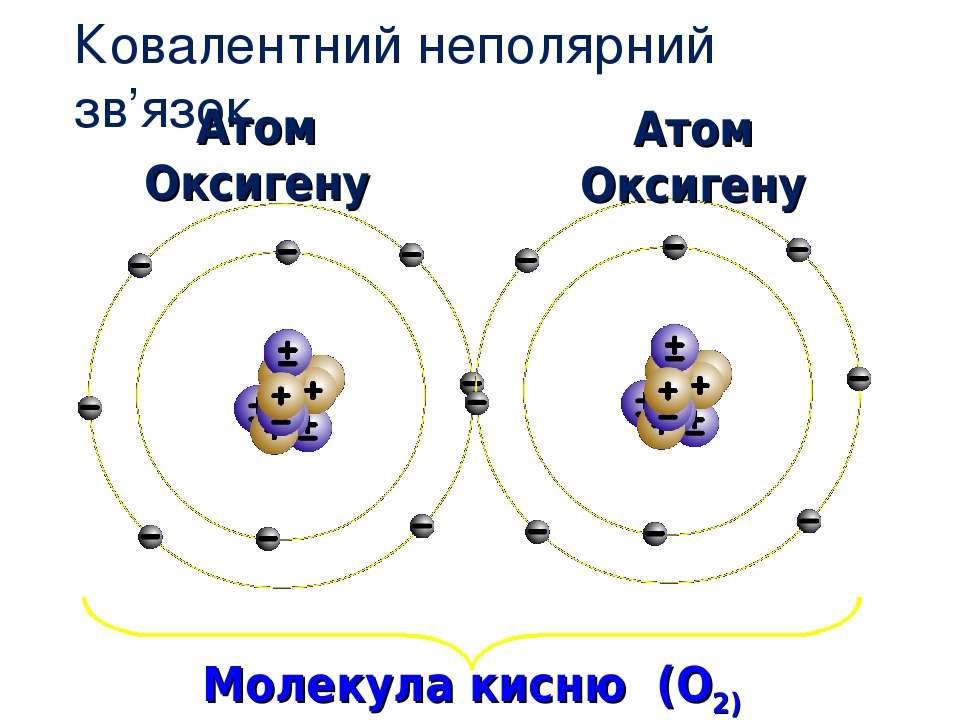 Ковалентний неполярний зв'язок Атом Оксигену Молекула кисню (O2) Атом Оксигену