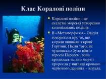 Клас Коралові поліпи Коралові поліпи - це скелетні морські утворення колоніал...