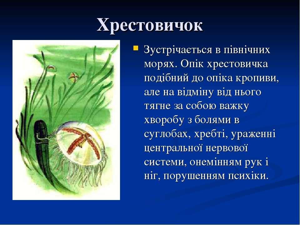 Хрестовичок Зустрічається в північних морях. Опік хрестовичка подібний до опі...