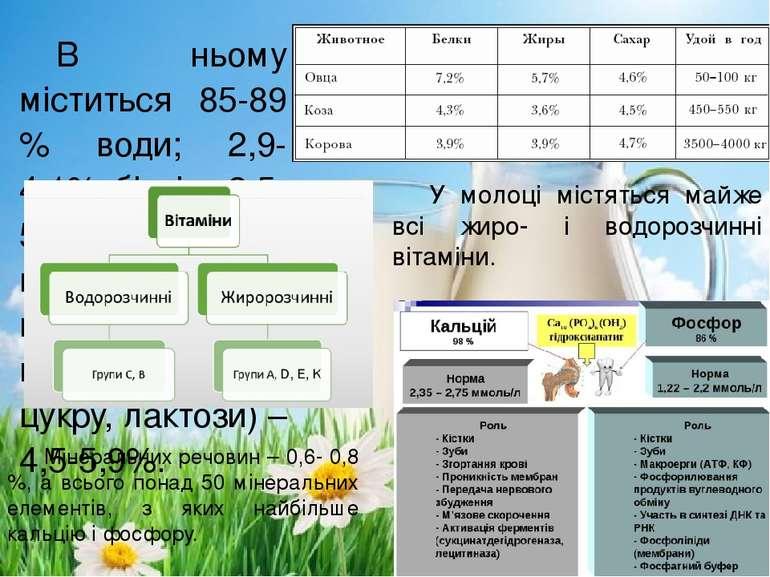 В ньому міститься 85-89 % води; 2,9-4,1% білків; 2,5-5,1 жиру, вуглеводів, (у...