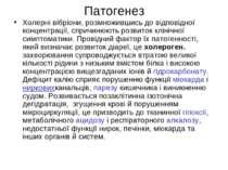Патогенез Холерні вібріони, розмножившись до відповідної концентрації, спричи...