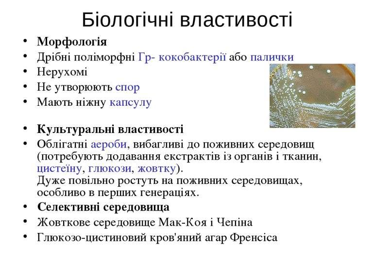 Біологічні властивості Морфологія Дрібні поліморфніГр- кокобактеріїабопали...