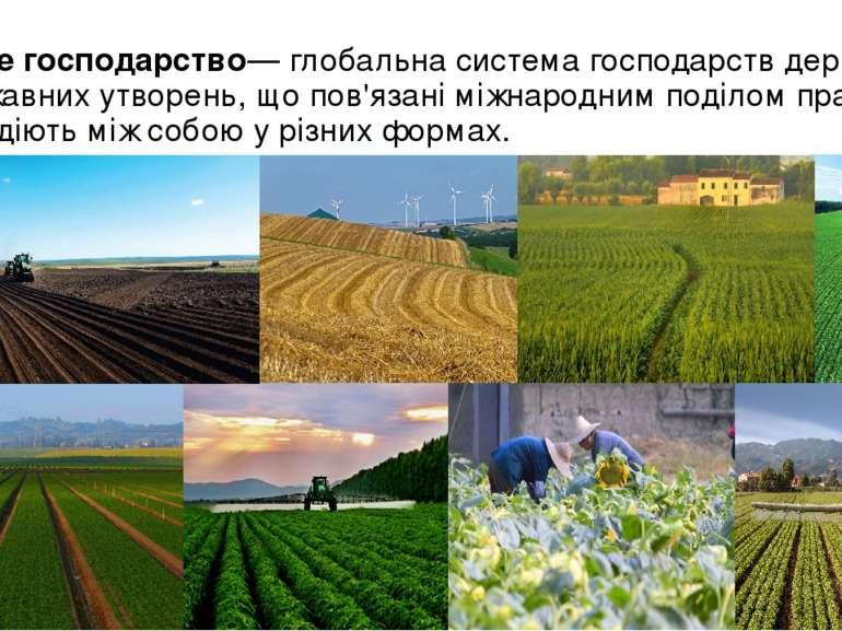 Світове господарство— глобальнасистемагосподарствдержавта недержавних утв...