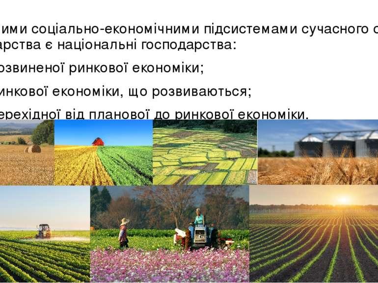 Основними соціально-економічними підсистемами сучасного світового господарств...