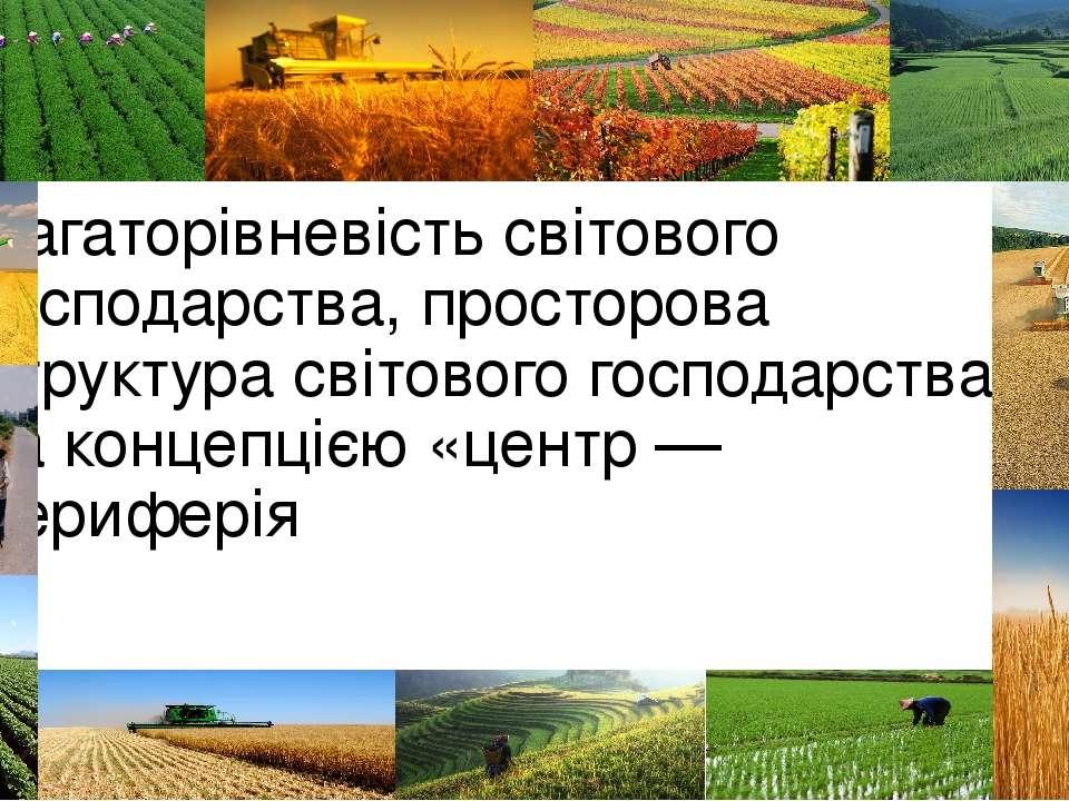 Багаторівневість світового господарства, просторова структура світового госпо...