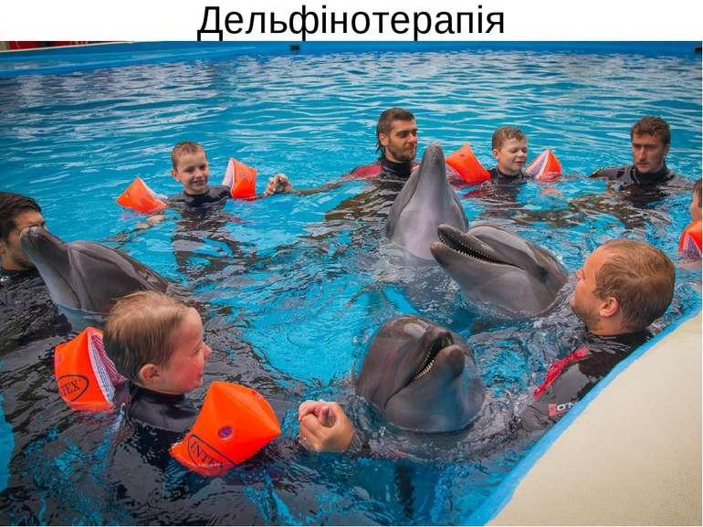 Дельфінотерапія
