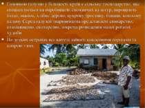 Головною галуззю у більшості країн є сільське господарство, яке спеціалізуєть...