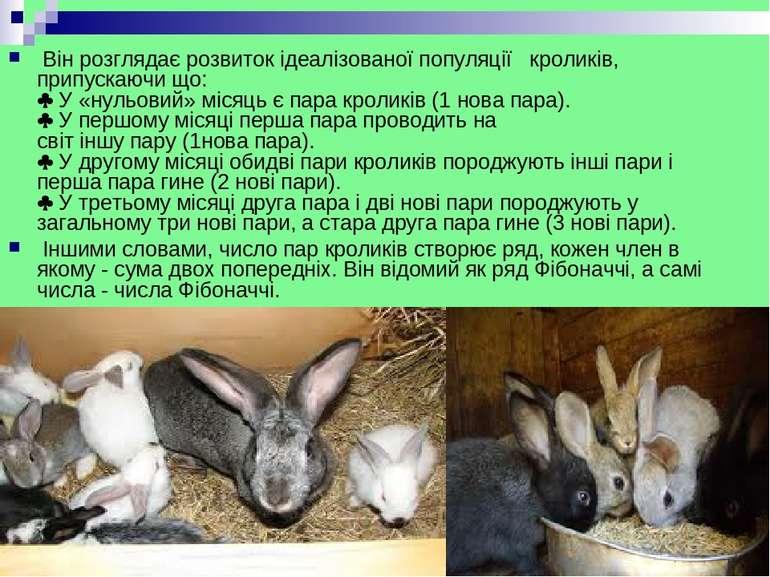 Вінрозглядаєрозвитокідеалізованоїпопуляції кроликів, припускаючи що: ...