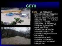 СЕЛІ Селi — це паводки з великою концентрацiею грунту, мiнеральних часток, ка...
