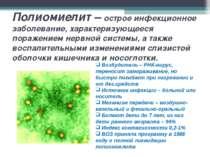 Полиомиелит – острое инфекционное заболевание, характеризующееся поражением н...