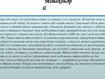 Мітохондрії Мітохондрії або певні їхні видозміни наявні в клітинах усіх еукар...