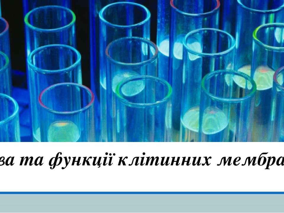 Будова та функції клітинних мембран