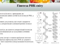 Гіпотеза РНК-світу Ця гіпотеза полягає у припущенні, що попередниками живих к...
