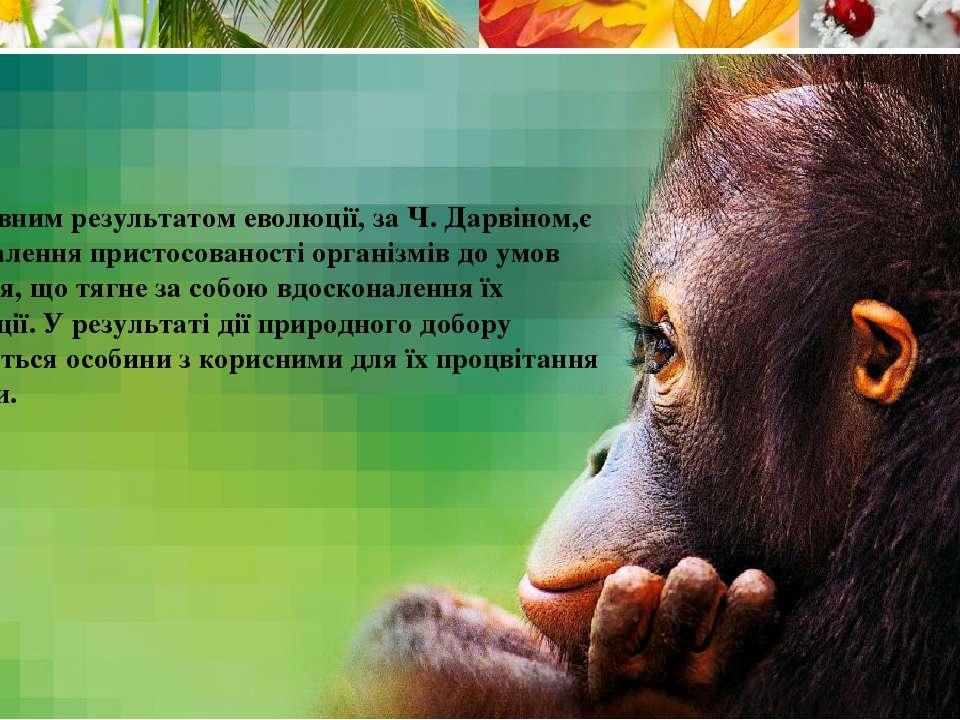Головним результатом еволюції, за Ч. Дарвіном,є вдосконалення пристосованості...