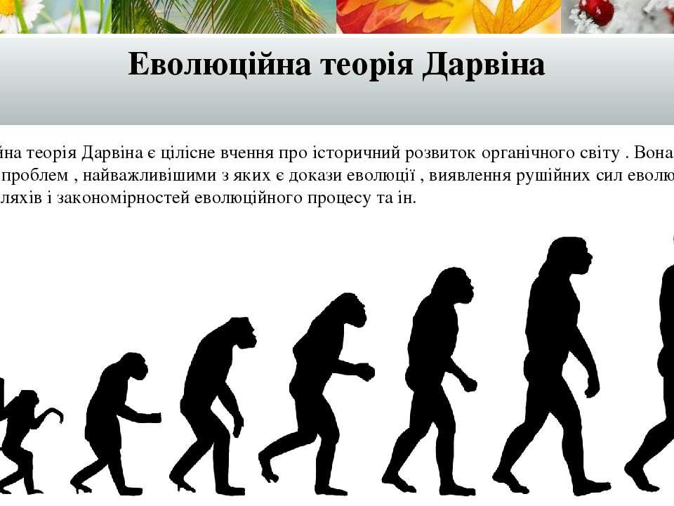 Еволюційна теорія Дарвіна Еволюційна теорія Дарвіна є цілісне вчення про істо...
