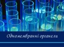 Одномембранні органели