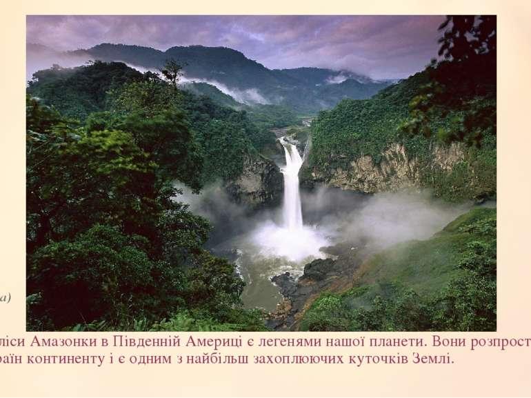 Дощові лісиАмазонкив Південній Америці є легенями нашої планети.Вони розпр...