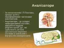 За визначенням І.П.Павлова, органи чуття є периферійними частинами аналізатор...
