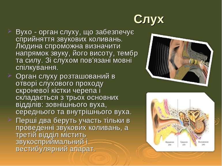Вухо - орган слуху, що забезпечує сприйняття звукових коливань. Людина спромо...