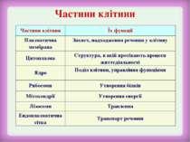 Частини клітини Частини клітини Їх функції Плазматична мембрана Захист, надхо...