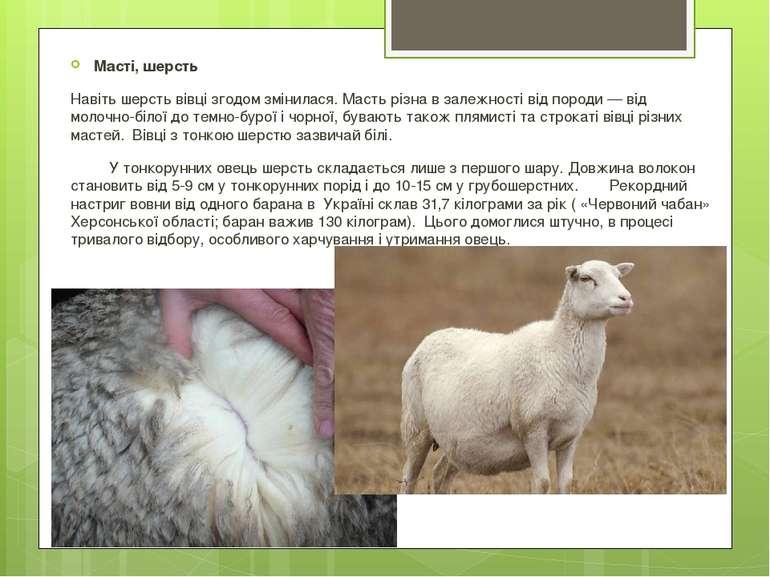 Масті, шерсть Навіть шерсть вівці згодом змінилася. Масть різна в залежності ...