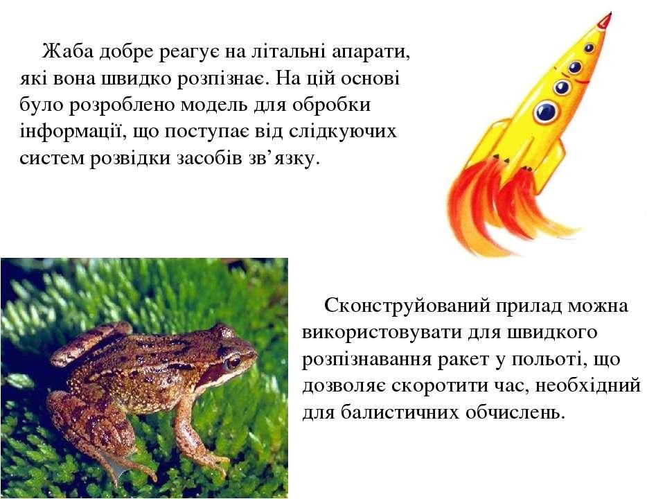 Жаба добре реагує на літальні апарати, які вона швидко розпізнає. На цій осно...