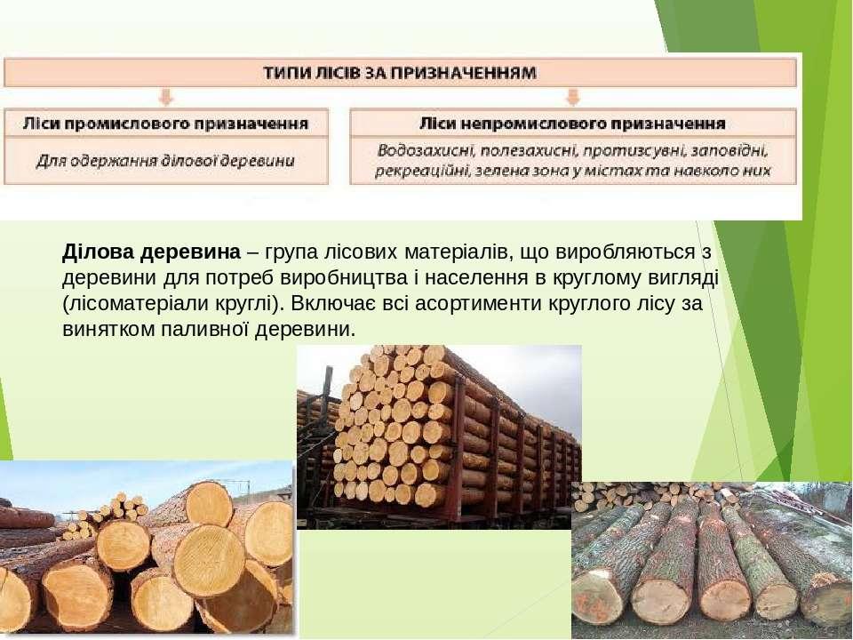 Ділова деревина – група лісових матеріалів, що виробляються з деревини для по...