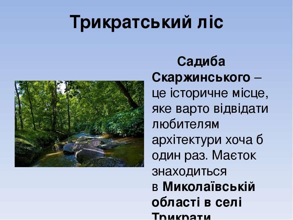 Трикратський ліс Садиба Скаржинського– це історичне місце, яке варто відвіда...