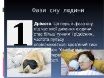 Фази сну людини Дрімота. Ця перша фаза сну, під час якої дихання людини стає ...