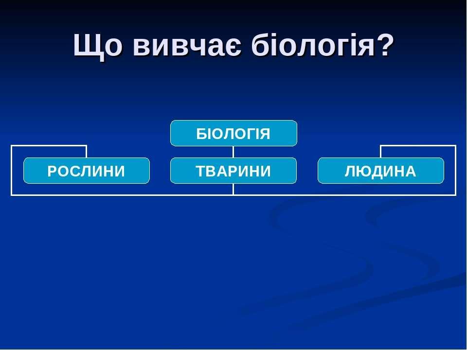 Що вивчає біологія?