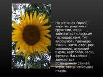 Нарівнинах Євразії, вкритих родючими ґрунтами, люди займаються сільським гос...