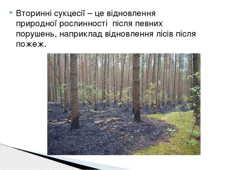 Вторинні сукцесії – це відновлення природної рослинності після певних порушен...
