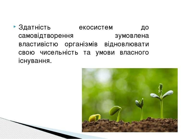 Здатність екосистем до самовідтворення зумовлена властивістю організмів відно...