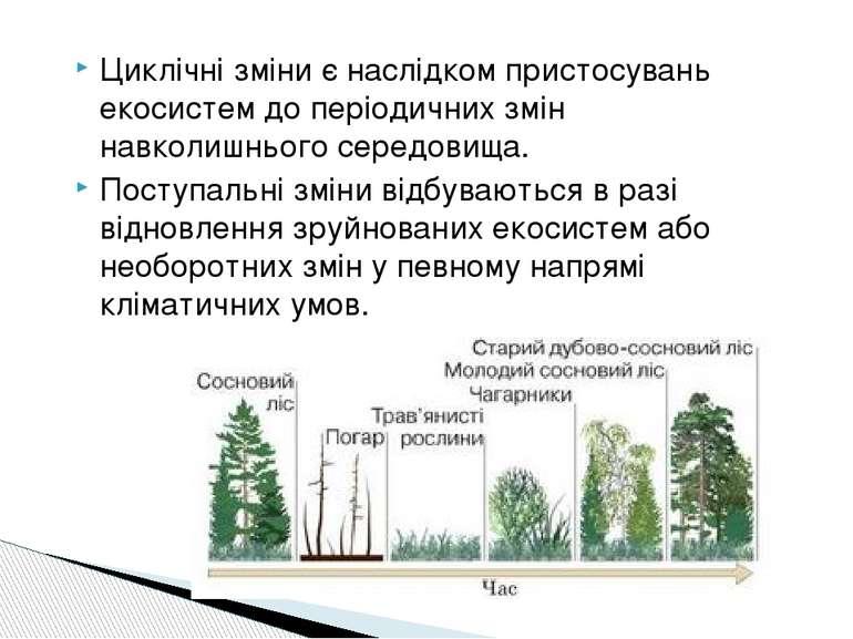 Циклічні зміни є наслідком пристосувань екосистем до періодичних змін навколи...