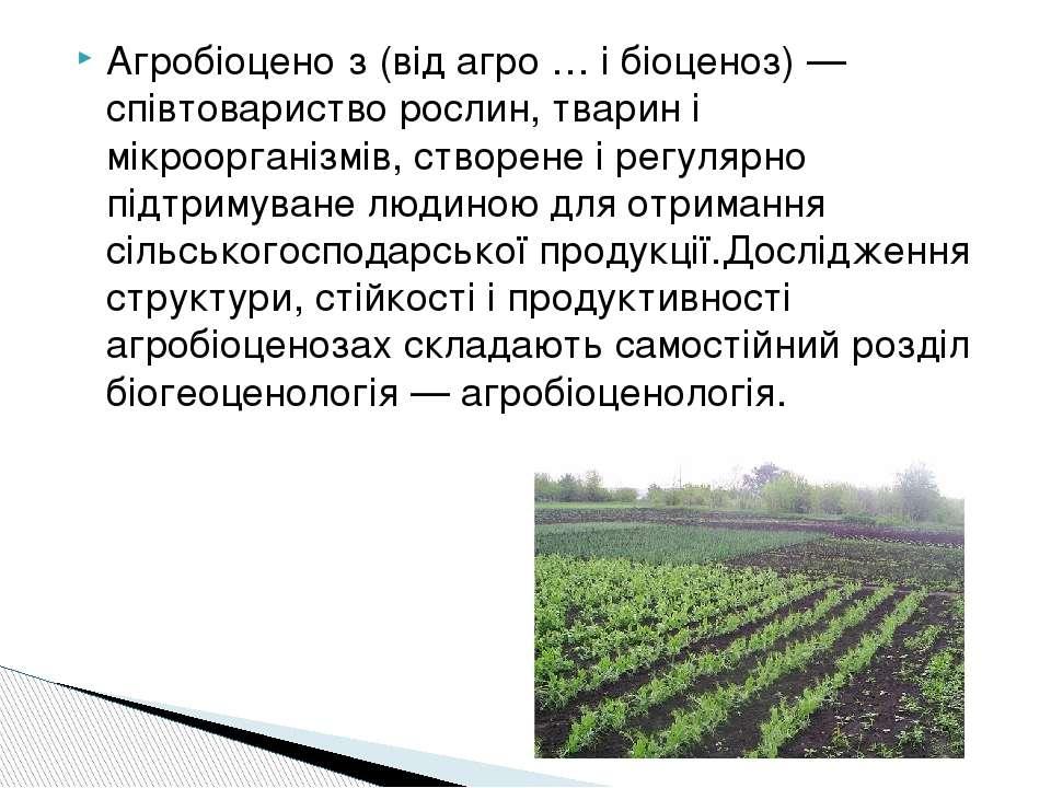 Агробіоцено з (від агро … і біоценоз) — співтовариство рослин, тварин і мікро...
