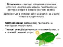 Фотосинтез — процес утворення органічних сполук із неорганічних завдяки перет...
