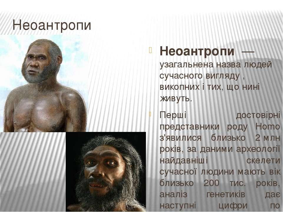 Неоантропи Неоантропи— узагальнена назва людей сучасного вигляду , викопних...